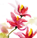 Abstract floral watercolor royalty free illustration