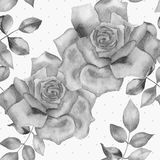 Abstract floral watercolor seamless background. Pink roses background. Abstract floral watercolor seamless background. Black and white roses background. Can be Stock Images