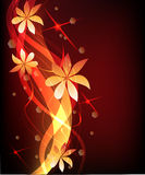 Abstract florall background. Abstract orange floral background .  image Stock Images
