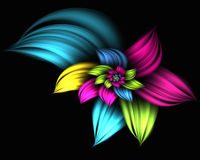 Abstract flower. Digitally generated abstract flower background Stock Photography