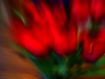 Abstract Flower. Blur Flower Abstract tulips Royalty Free Stock Photo
