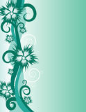 Abstract flower background. Images for your design Stock Image