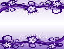 Abstract flower background. Stock Photos