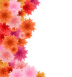 Abstract flower background. A lot of coloured flowers on white background royalty free illustration