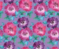 Abstract flower background. Royalty Free Stock Photography