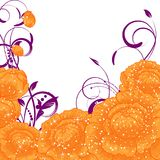 Abstract flower background. Floral  invitation Stock Photos