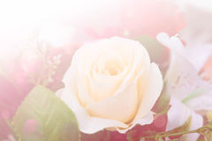 Abstract flower background. flowers made with color filters Stock Photography