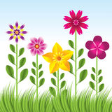 Abstract flower background with grass - illu. Stration Royalty Free Stock Photos
