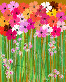 Abstract flower background, Stock Photography