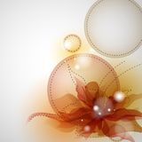 Abstract Flower Background. Stock Images