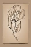 Abstract flower on a beige background. Imitation ink Royalty Free Stock Photography