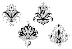 Abstract flower blossoms and petals. Set for design royalty free illustration