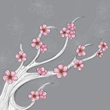 Abstract flower branch for spring. Abstract white flower branch with pink cherry flowers. Illustration for spring, decorated with lines, on grey background Royalty Free Stock Photos