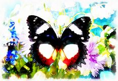 Abstract Flower  with butterfly, computer collage painting.  Stock Photo