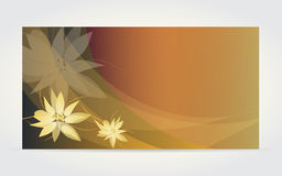 Abstract flower card with vanilla flower Royalty Free Stock Image