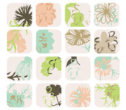 Abstract flower collection. Neutral color floral images in squares as a collection Royalty Free Stock Images