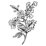 Abstract flower, fantasy blossom, coloring pictures, monochrome sketch, doodle plants, black and white vector Royalty Free Stock Photos