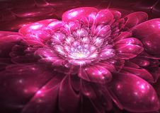Abstract flower fractal art royalty free illustration