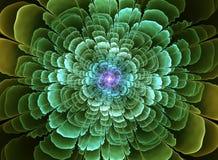 Abstract flower fractal shape Stock Photos