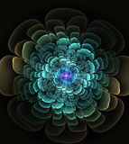 Abstract flower fractal shape Stock Photo