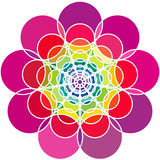 Abstract flower full colour vector Royalty Free Stock Photos