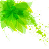 Abstract flower with green blots Royalty Free Stock Image