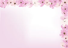 Abstract flower greeting card. On pink Royalty Free Stock Photography