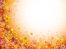 Abstract flower orange color pattern Stock Images