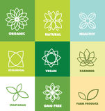 Abstract flower organic natural food logo badge stock illustration
