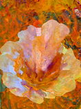Abstract flower painting. In light colors with orange background Stock Photography