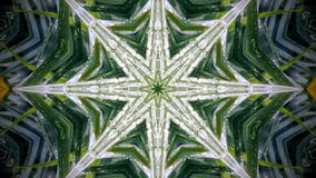 Abstract flower pattern and shape 8 sided star. Photo mandala. Abstract shapes. White and green. Height sided star. Water drops Stock Image