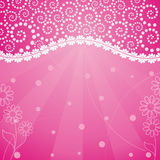 Abstract flower pink frame Royalty Free Stock Images