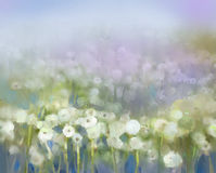 Abstract flower plant painting. Abstract oil painting white flowers field in soft color. Oil paintings white dandelion flower in the meadows Stock Photo