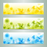 Abstract Flower Vector Background / Brochure Template / Banner. Stock Images