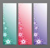 Abstract Flower Vector Background / Brochure Template / Banner. Royalty Free Stock Photos