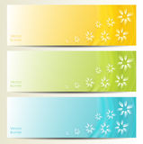 Abstract Flower Vector Background / Brochure Template / Banner. Stock Photography