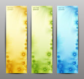 Abstract Flower Vector Background / Brochure Template / Banner Stock Photos