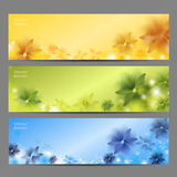 Abstract Flower Vector Background / Brochure Template / Banner Royalty Free Stock Photography
