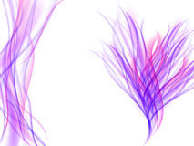 Abstract flower with violet and pink wavy lines on white Royalty Free Stock Photos