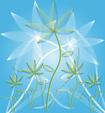 Abstract flowers background. Abstract flowers on blue background - vector illustration Stock Photo