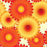 Abstract flowers background. Stock Image