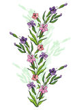 Abstract flowers branch. Illustration of abstract flowers branch with background royalty free illustration