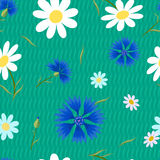 Abstract flowers Cornflowers-01 Stock Photo
