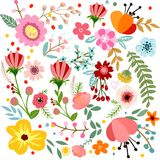 Botanical floral background square Royalty Free Stock Images