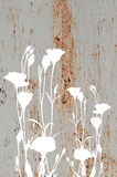 Abstract flowers on old rusty metal texture Royalty Free Stock Images
