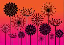 Abstract flowers silhouettes background Royalty Free Stock Images