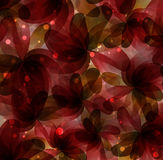 Abstract flowers Royalty Free Stock Photography