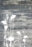 Abstract flowers on vintage old painted wood texture Royalty Free Stock Photos