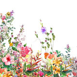 Abstract flowers watercolor painting. Spring multicolored flowers. On white background Royalty Free Stock Photography