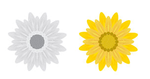 Abstract Flowers on White Background. Vector Stock Photography